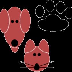 Tierarztpraxis in Jübek